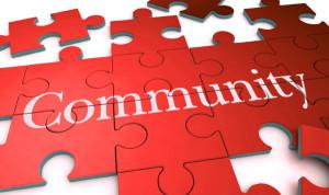 JLNV - Community Puzzle
